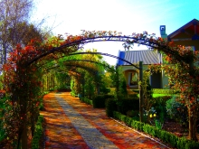 Garden features arbour tunnel metal arches