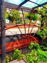Bespoke rusted metal garden frame Christchurch NZ