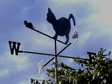 Wind vane cat and mouse Christchurch custom design Metalcraft engineering